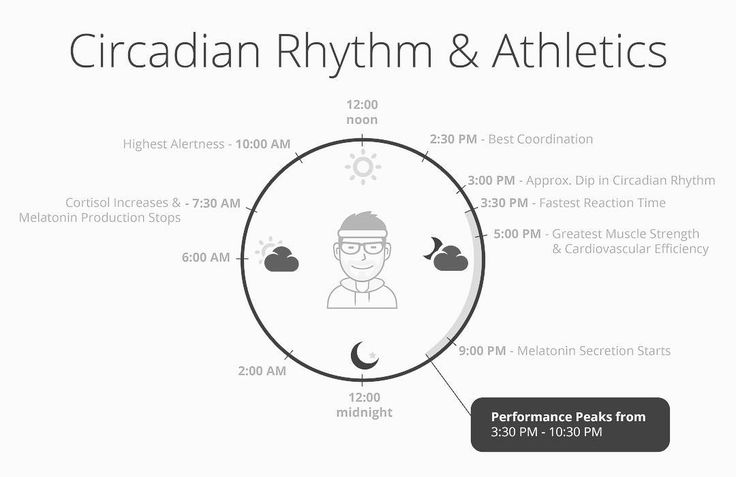 outline the circadian rhythm essay Circadian rhythm essay writer free circadian rhythms essays and papersfree circadian rhythms papers, essays, and research papersbiopsychology:.