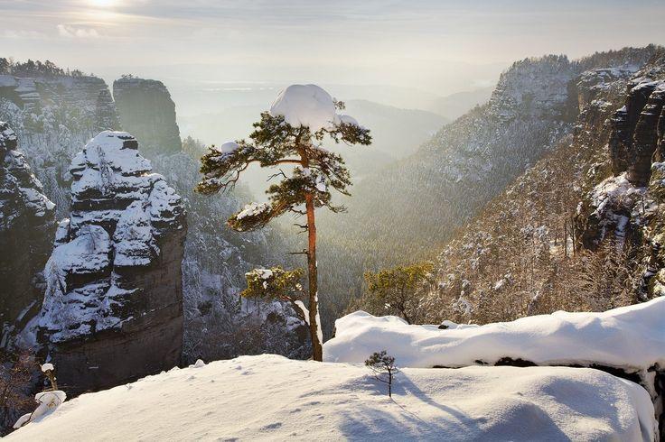 České Švýcarsko Zima v Pravčickém dole