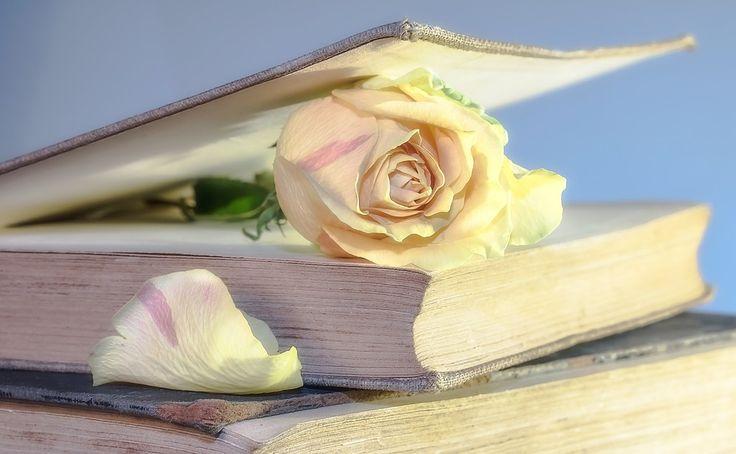 Ruže, Kniha, Staré Knihy, Kvet, Ruží, Second Hand