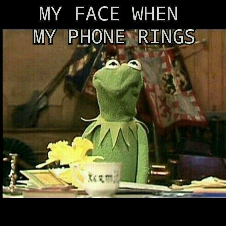 39 Best Muppet Quotes Lol Images On Pinterest: 75 Best Kermit's Smart Ass Images On Pinterest