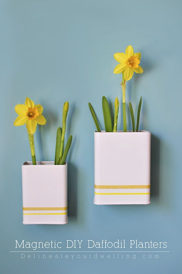 #Upcycle old Spice containers into clean and modern Magnetic DIY Daffodil Planters! #spring Delineate your dwelling