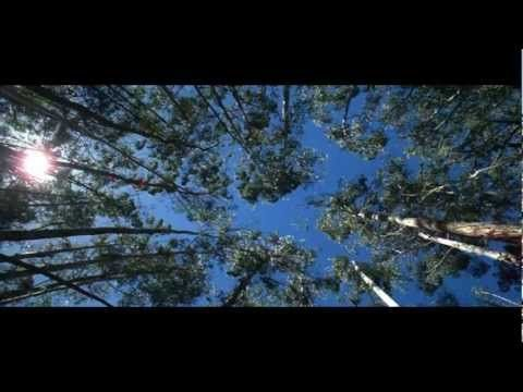 There's Nothing Like Australia - (3 minute version) - YouTube