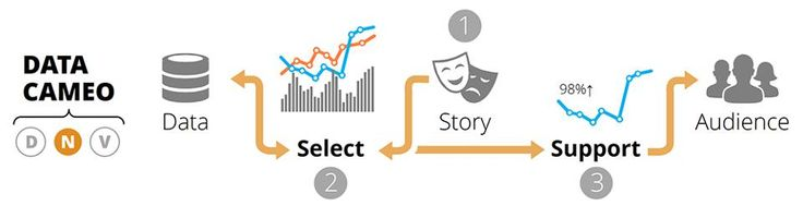 The data cameo starts with a pre-defined story—not data. Various data points are selected to bolster or substantiate the desired narrative. Without a solid data foundation, the data cameo can quickly unravel under closer scrutiny.