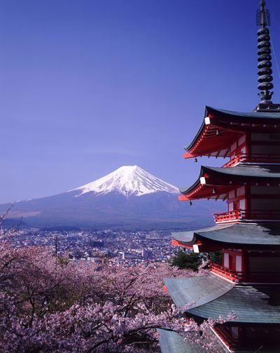 Mount Fuji & cherry blossom, Japan.