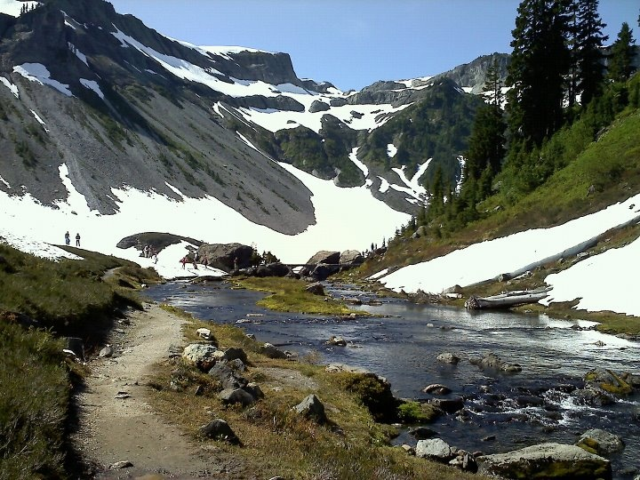 Mt Baker Ski Area in summer-near Bellingham, WA. Easy access for short and longer hikes for all skill levels.