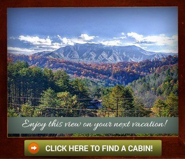 Amazing Views Cabin Rentals    15% Off Your Entire Stay Through May!