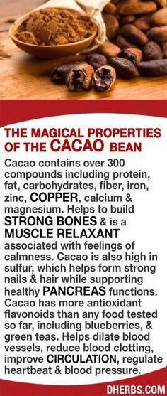 H. Organic coffee. Organic chocolate. Cocoa. Cacao. Decaf. Shade-grown.