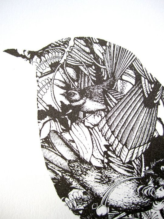 birdy by Flox