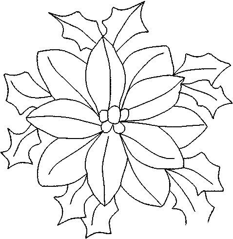 dibujos flor de nochebuena para colorear - Buscar con Google