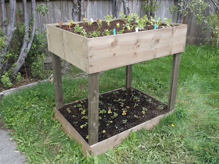 The Base Of A Raised Garden Bed Is On The Ground And Its Soil Sits Directly  On The Ground, Whereas The Bed Of A Standing Garden Bed Is On Legs And