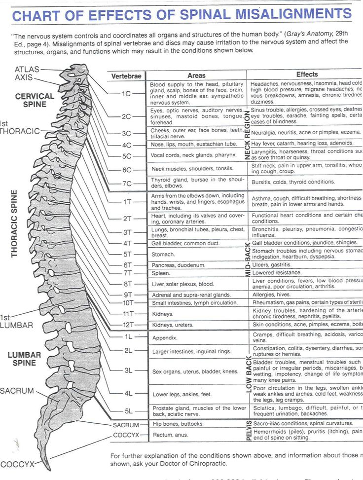 I have arthritis of the spine. Plus a tear, pinched nerve,and numerous herniated discs!