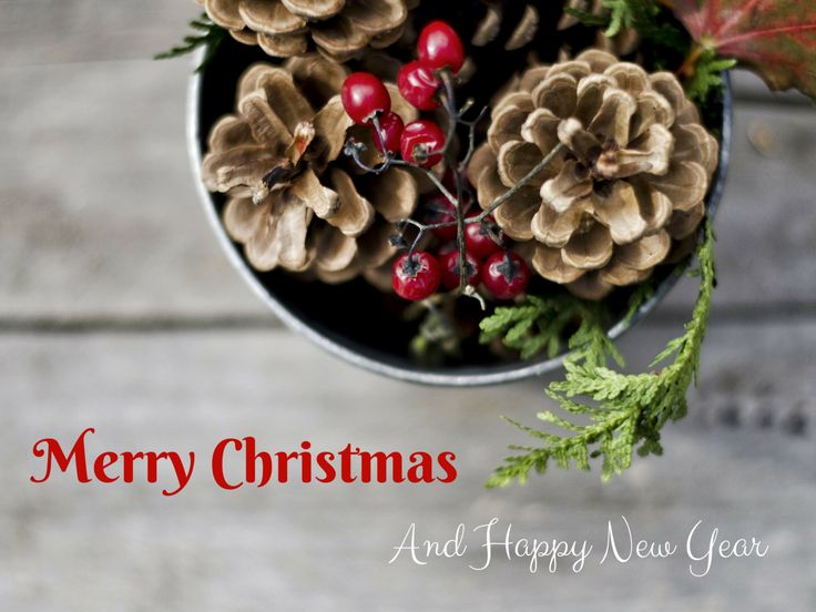 Merry Christmas Photo Greeting Card, 4x5 christmas cards, blank inside, happy…
