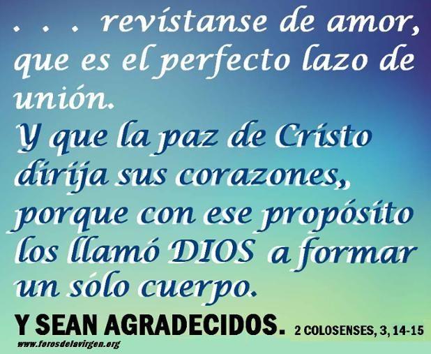 """#REFLEXIONES """"... revístanse de amor, que es el perfecto lazo de unión. Y que la paz de Cristo dirija sus corazones, porque con ese propósito los llamó Dios a formar un solo cuerpo. Y sean agradecidos""""... 2 Colosenses 3, 14-15."""