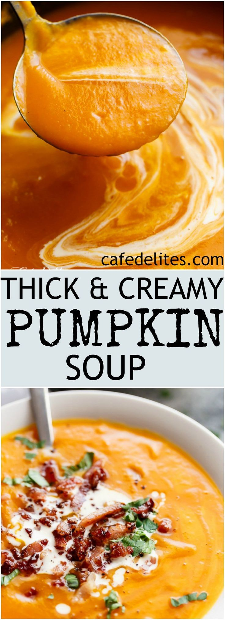 hick and Creamy Pumpkin Soup