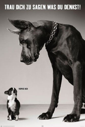 Empire 392107 Hunde - Trau dich was zu sagen - Tier-Poster schwarz-weiss Foto - Grösse 61 x 91.5 cm