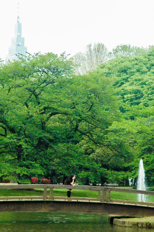 Yoyogi Park || What to do in Shibuya? Neighbourhood Guide Tokyo, Japan || The Travel Tester