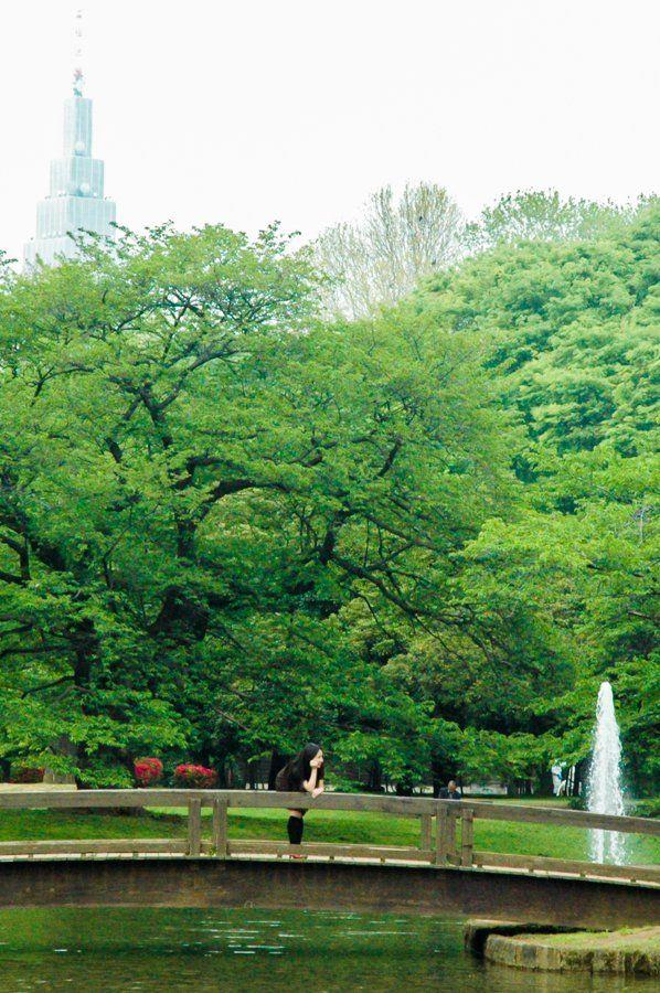 Yoyogi Park || What to do in Shibuya? Neighbourhood Guide Tokyo, Japan || The Travel Tester