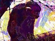"New artwork for sale! - "" Zoo Squirrel Monkey Animal Mono  by PixBreak Art "" - http://ift.tt/2v4REyy"