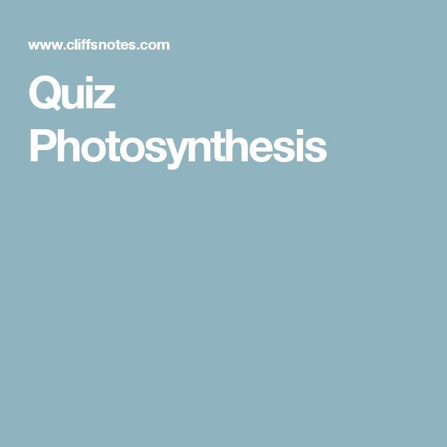 Quiz Photosynthesis