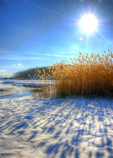 Sun after the snow by slack12 on Flickr. Branford, Connecticut.