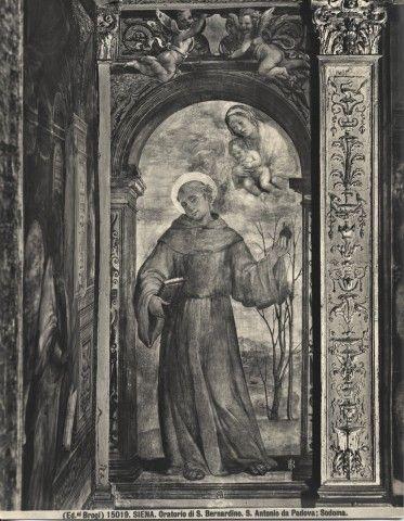 Sodoma, s. antonio da padova - Oratorio della Compagnia di San Bernardino - Wikipedia