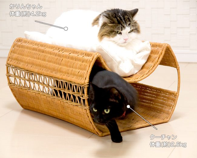 Rattan beans bed