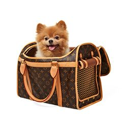 Great for: Traveling by Car With a Small Dog This spiffy Louis Vuitton tote is perfect for seriously stylish (and pampered) pets. $2,430 | LouisVuitton.com