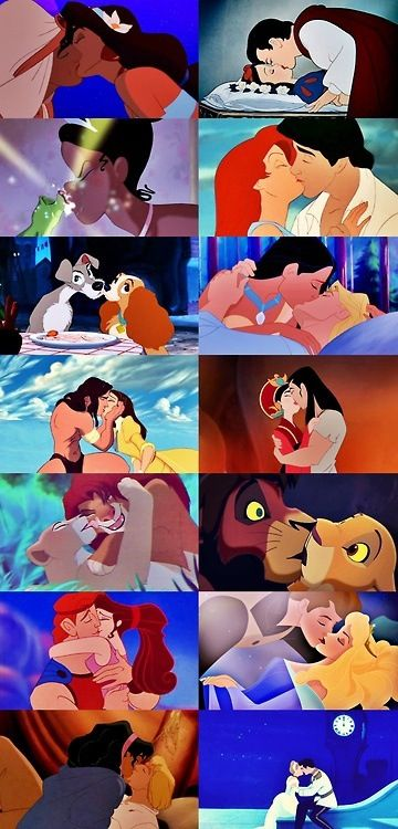 Disney couples Aladdin, Snow white, princess and the frog, little mermaid, lady and the tramp, Pocahontas, Tarzan, Mulan, lion king, Hercules, sleeping beauty, hunch back of norte dame, and Cinderella.