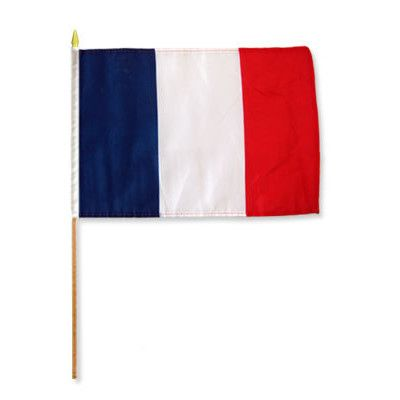 FlagsImporter France Traditional Flag and Flagpole Set