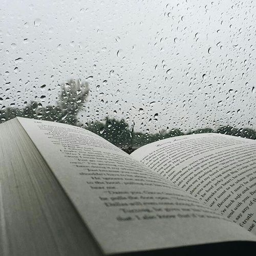 Nothing better than a book, tea, and a blanket when it's raining ☕