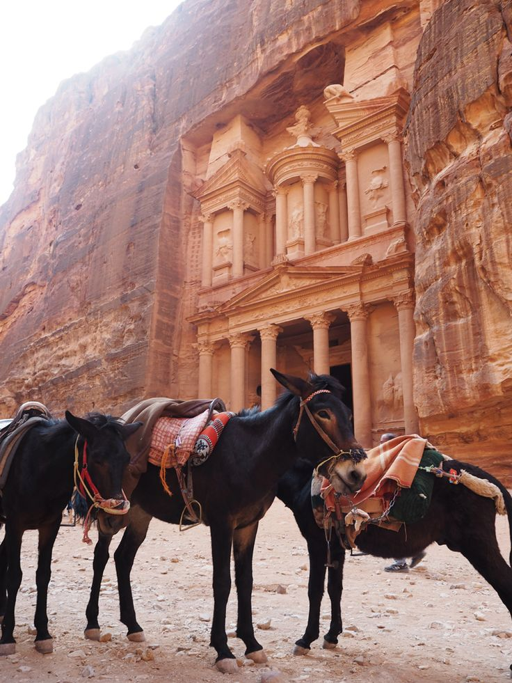 Petra, Jordan Tours with Raami Tours and experience the ancient Hidden City like never before.
