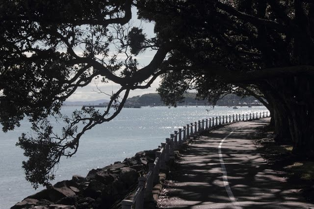 A lot of visitors to Auckland just stay in the centre of the city. But there is so much more to see than just the Sky Tower. Like this walk down Tamaki Drive.
