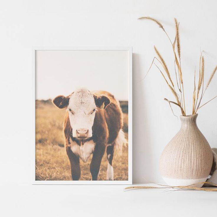 Highland cow print black and white modern farmhouse wall