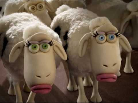 12 Best Serta Sheep Images On Pinterest Counting Sheep