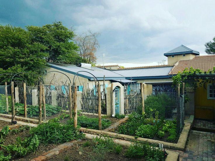 Vegetable garden at Bleuville ecological village