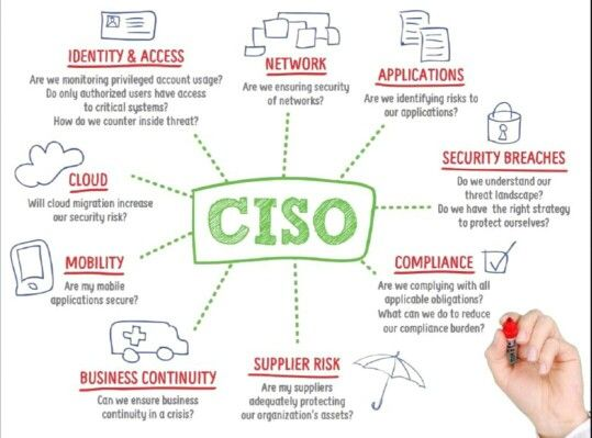 13 best Compliance \ integriteit images on Pinterest Thoughts - ciso resume