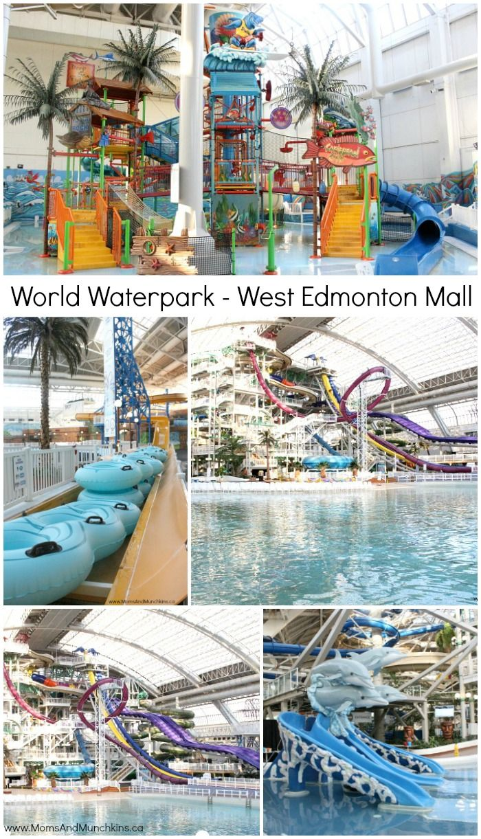 The World Waterpark in West Edmonton Mall has something for all ages! The kids will love the multi-level play structure and older kids will love the slides!