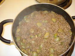 Duri djon djon Haitian black mushroom rice the best