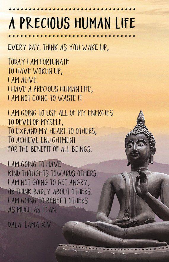 Quote Poster Dalai Lama A Precious Human Life Buddha Quotes Inspirational Good Life Quotes Buddhist Quotes