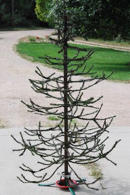 Pinning this for the idea. Take an old artificial tree, trim off the 'green (leaves?)', cut, cut, cut... then tone down the green of the tree by spray painting, hit and miss style, with some brown paint.