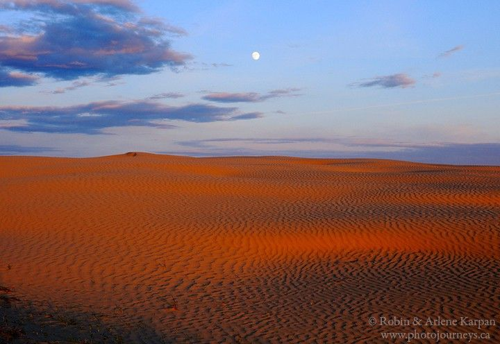 The Great Sand Hills of southwest Saskatchewan via Robin & Arlene Karpan