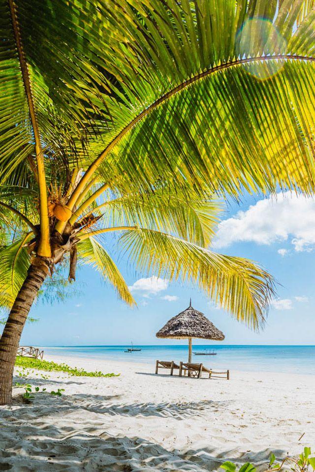 Mafia Island - Tanzania. Timbuktu Travel