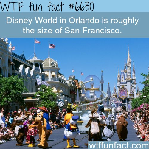 The size of Disney World in Orlando - WTF fun facts