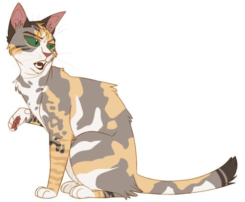 Anime Animals Challenges Welcome To Drawing Warriors Warrior Cats Cat