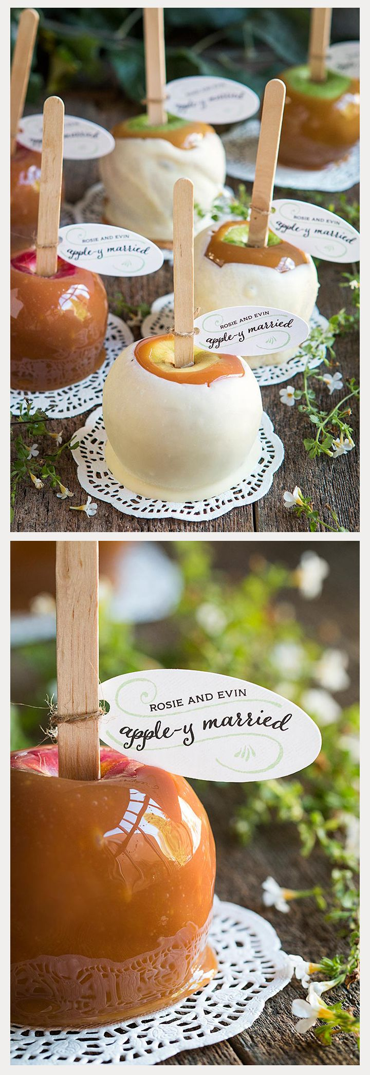 25 Tasty Caramel and Candy Apples - caramel apple wedding favors