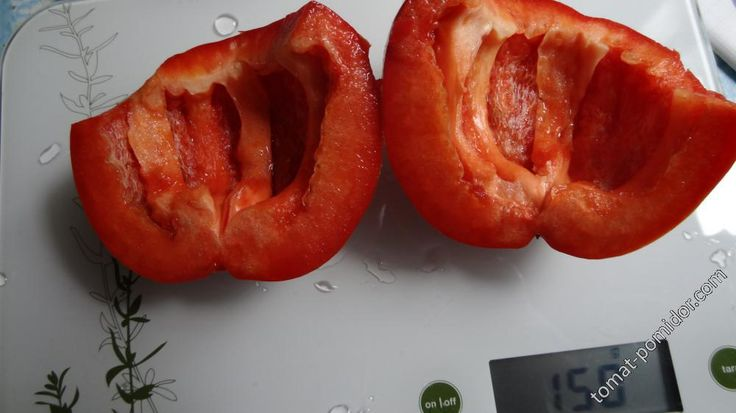 Форум - выращивание томатов, огород, дача - перец Колобок