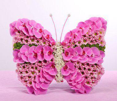 pink flower butterfly