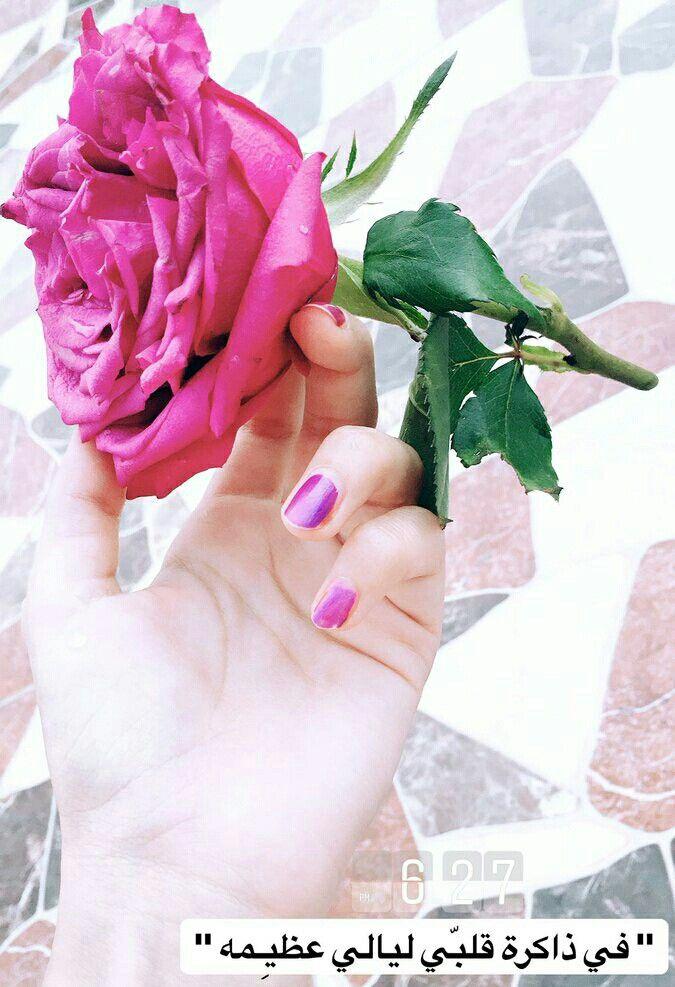 Pin By روح الورد On سناباتي 17th Birthday Pink Rose Myrrh