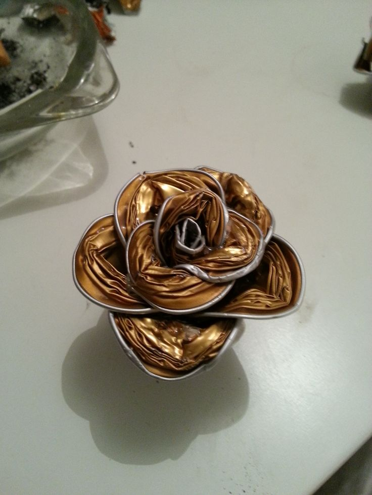 rose capsule nespresso