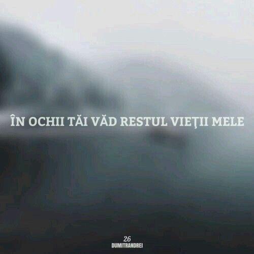 #Ochi